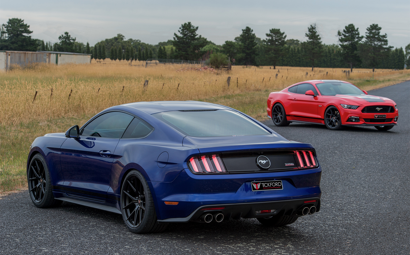 Tickford tunes Ford's Mustang