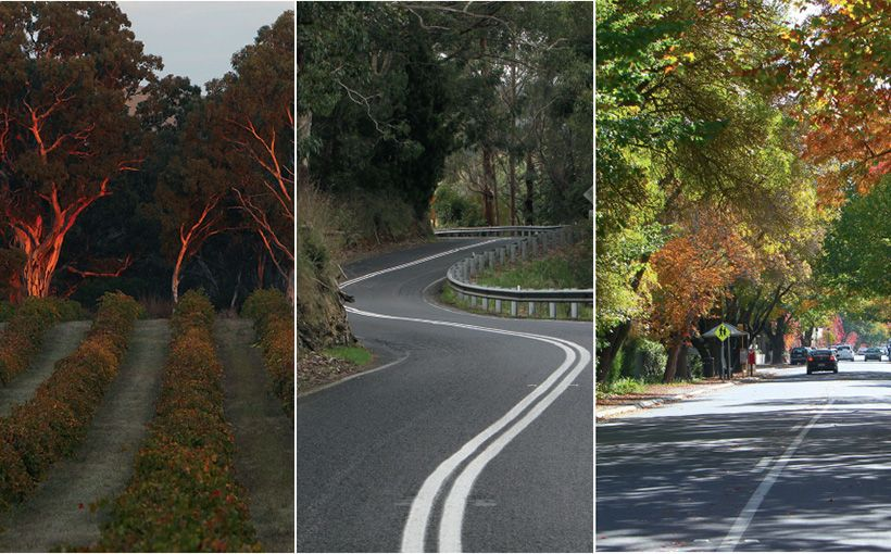 South Australia Adelaide Hills Ride