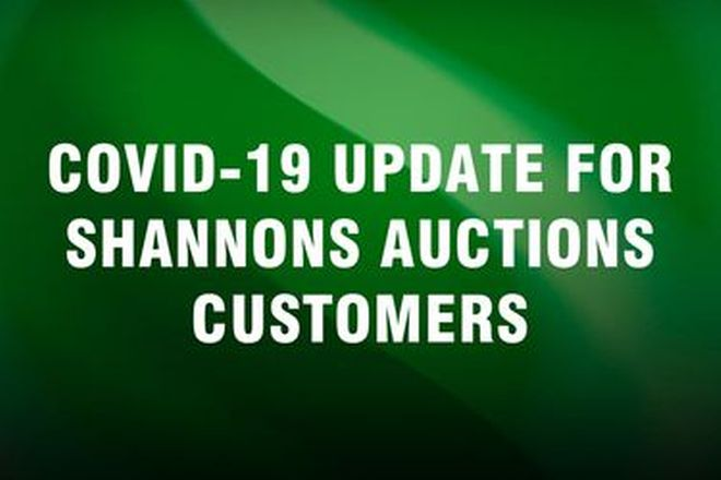 COVID-19 update for Shannons Auctions customers