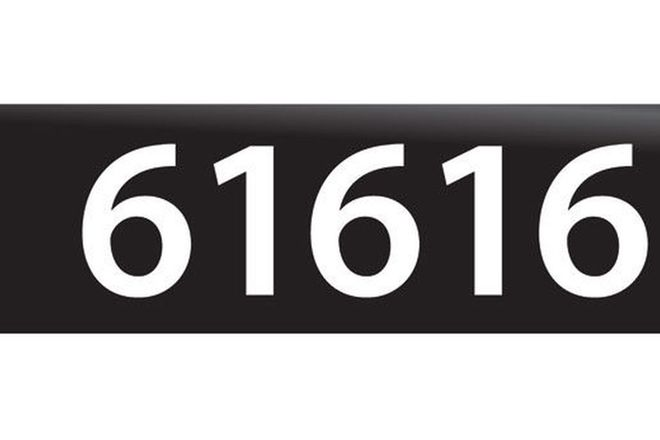 RTA NSW Numerical Number Plates '61616'
