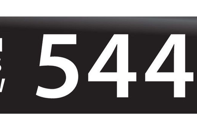 RTA NSW Numerical Number Plates '544'