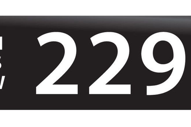 RTA NSW Numerical Number Plates '229'