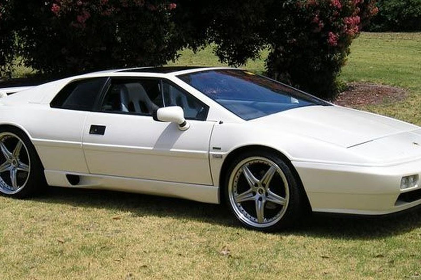 Sold Lotus Esprit 40th Anniversary Turbo Coupe Auctions