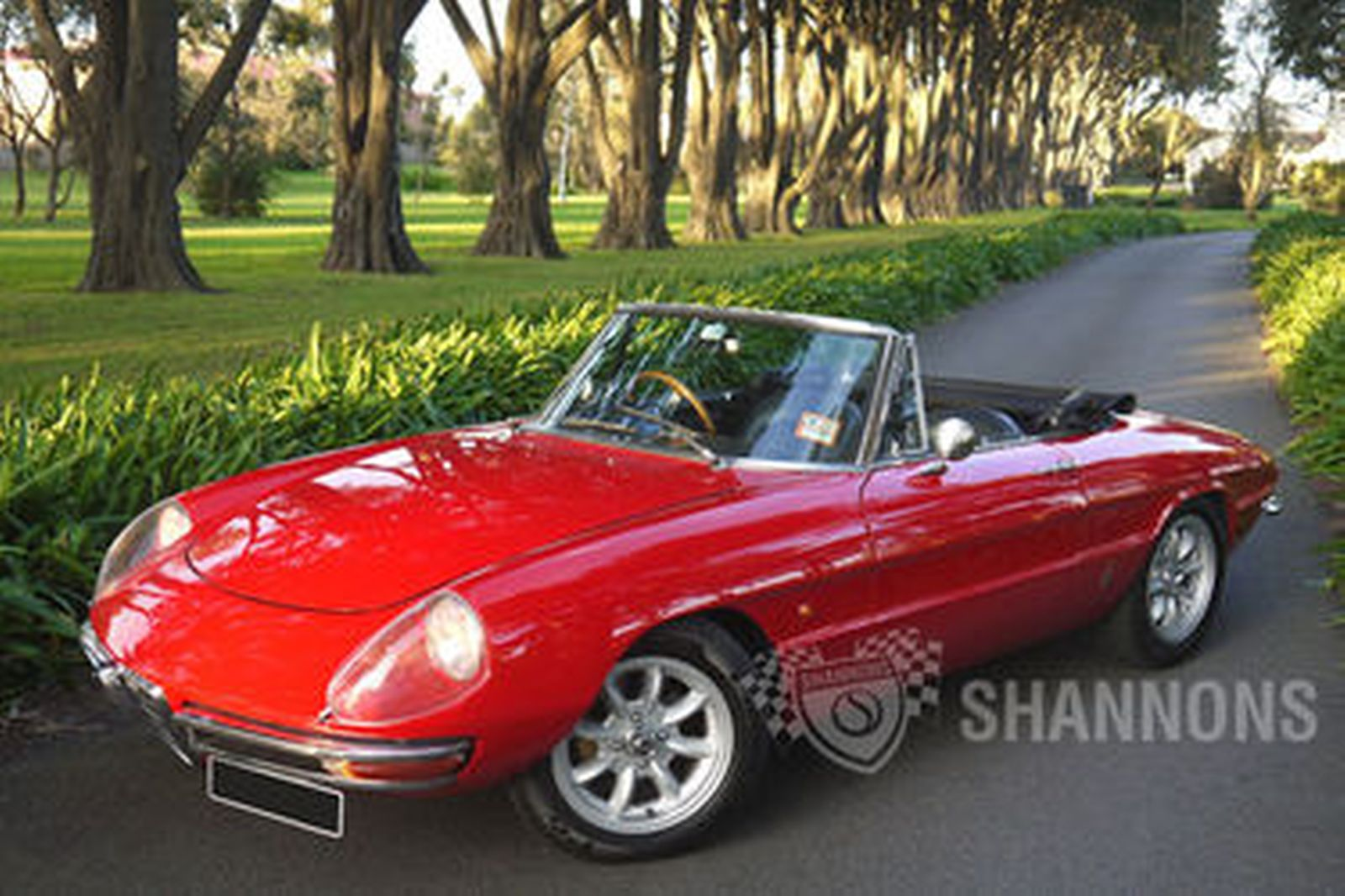 Sold Alfa Romeo Duetto Spider Auctions Lot Shannons - Alfa romeo spider 1966 for sale